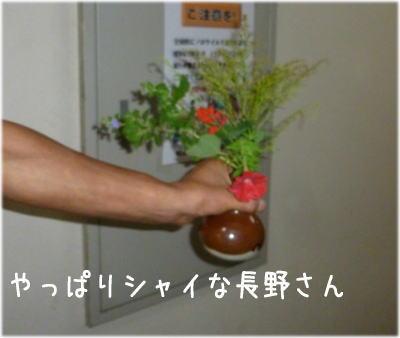 長野さん花4