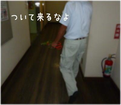 長野さん花1
